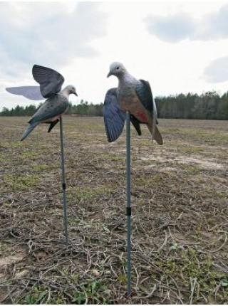 Чучело голубя  с  крыльями Hunter's Edge на прищепке