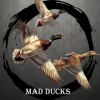 MAD DUCKS, Россия
